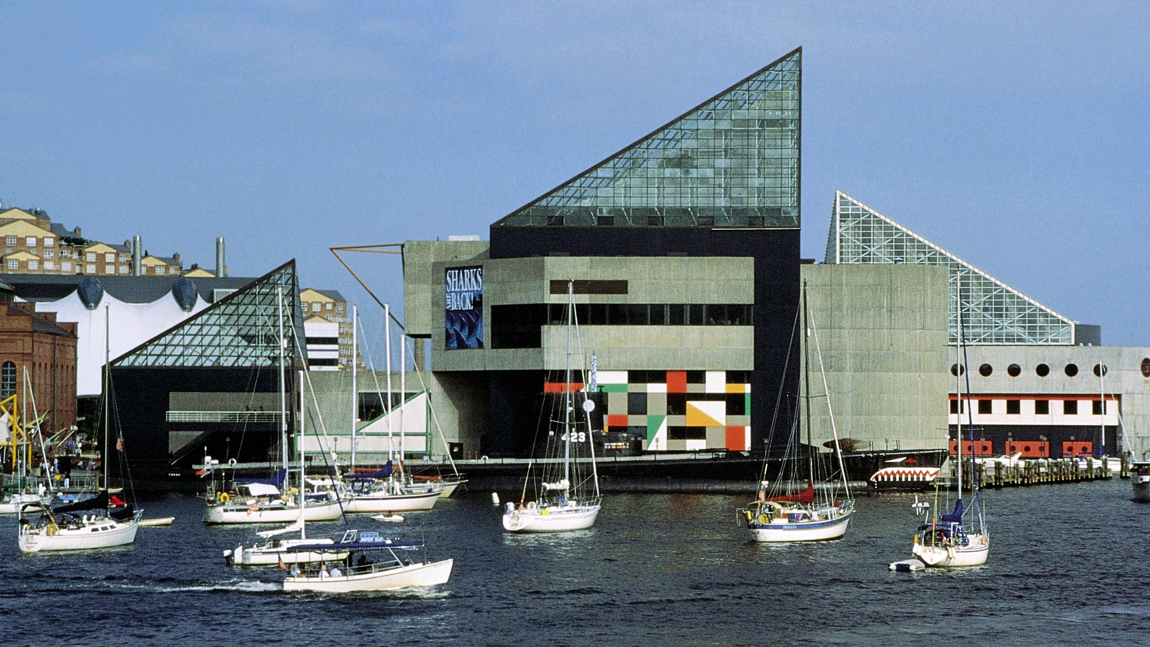 National Aquarium, Baltimore | LeMessurier
